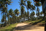 Dominican Republic Motorcycle Tour